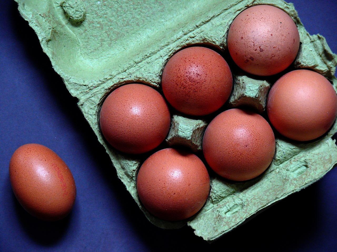 egg-1803348_1280